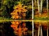 Ранняя осень на оз.Дягильно